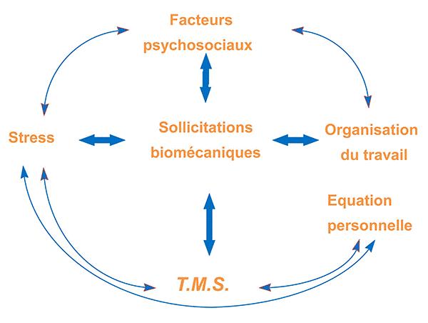 TMS : Les facteurs de risques